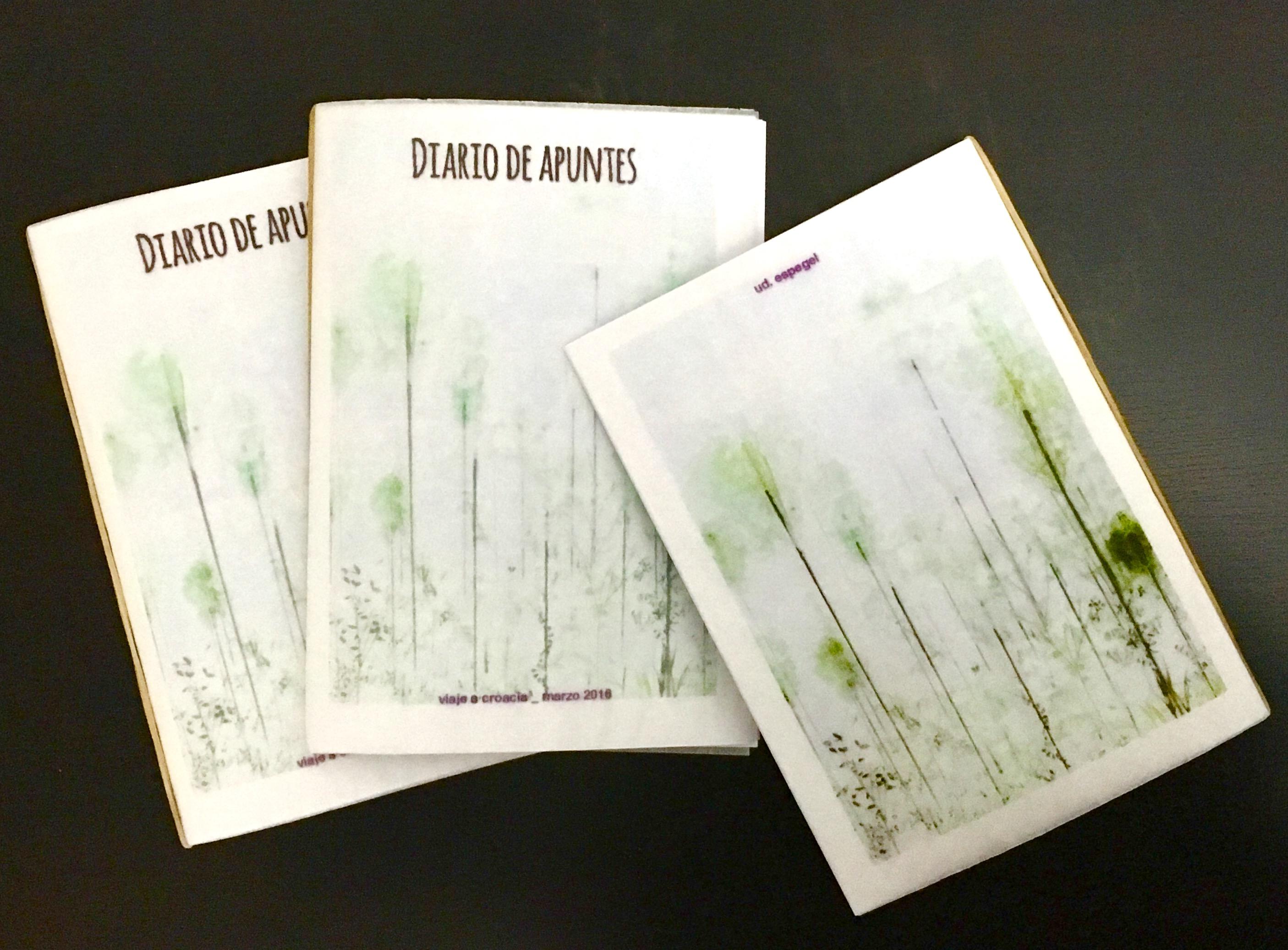_ Cuadernos de apuntes
