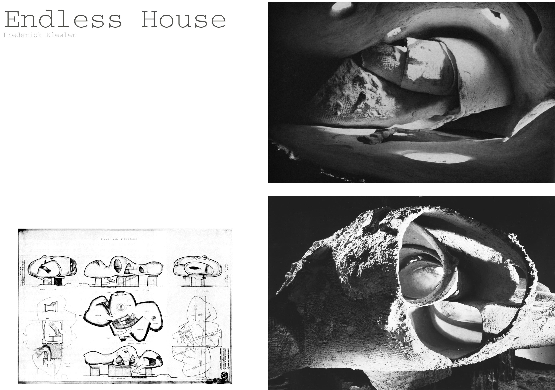 Endless House