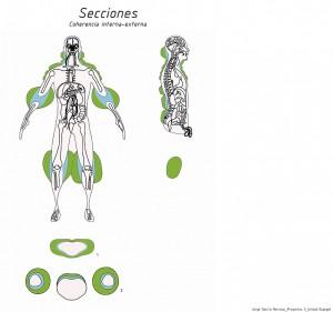 Secciones (3)