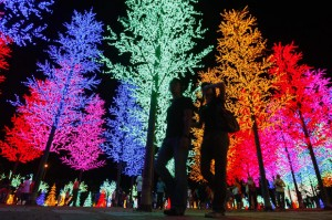 neon-trees_1706201i